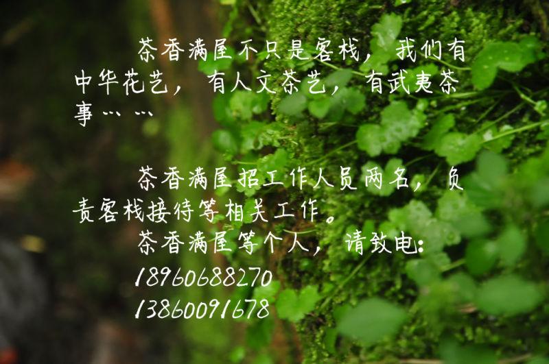 mmexport1434629780946