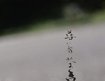 【欢言茶会后记】 大雨过后,欢言永驻,两岸茶人一家亲!